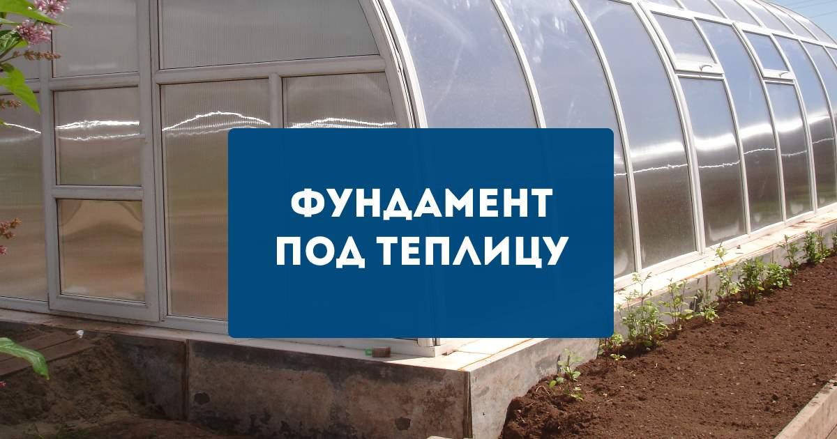 теплица тюльпанов краснодар краснодарский край